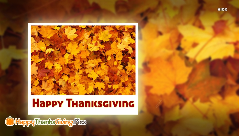 Thanksgiving Images For Free Download