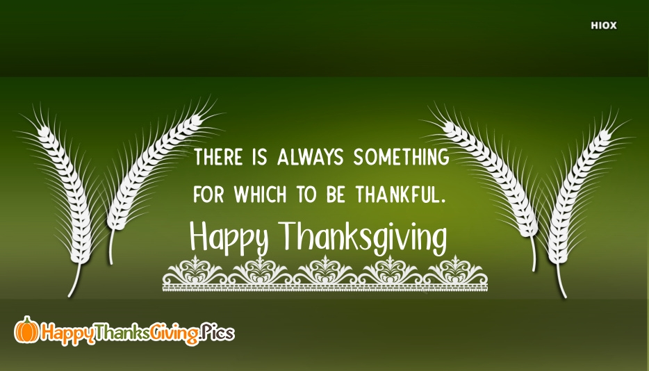 There is Always Something For Which To Be Thankful. Happy Thanksgiving