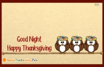 Good Night Happy Thanksgiving